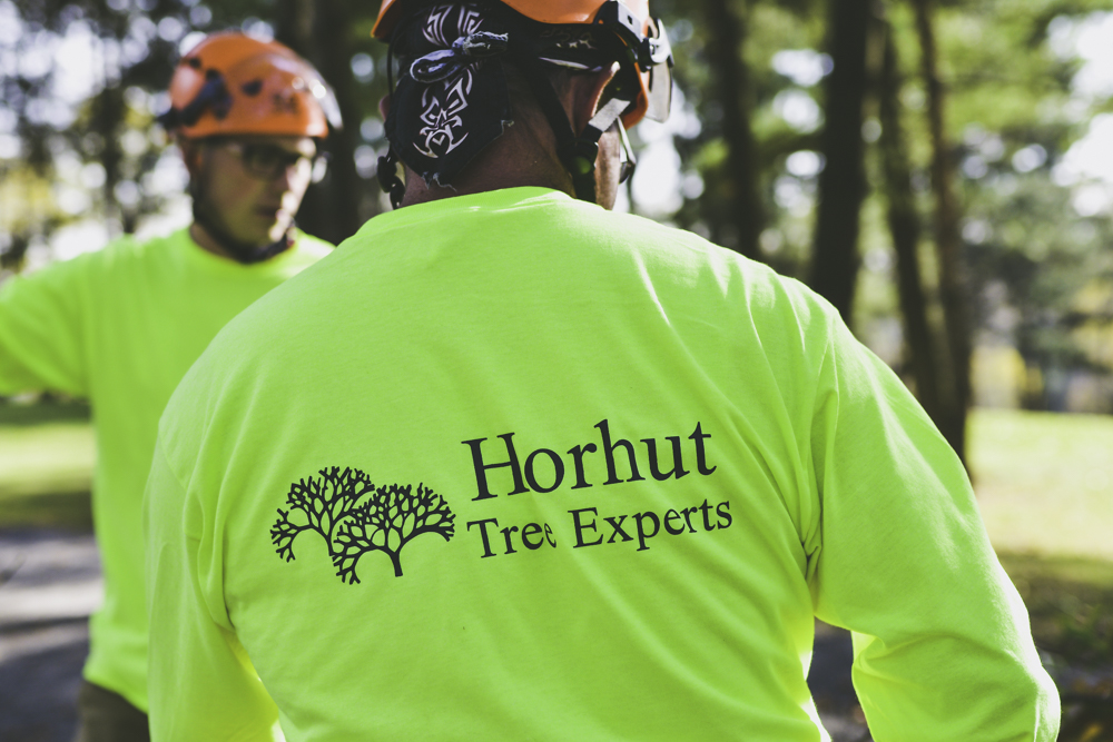 Horhut Tree Company Pittsburgh