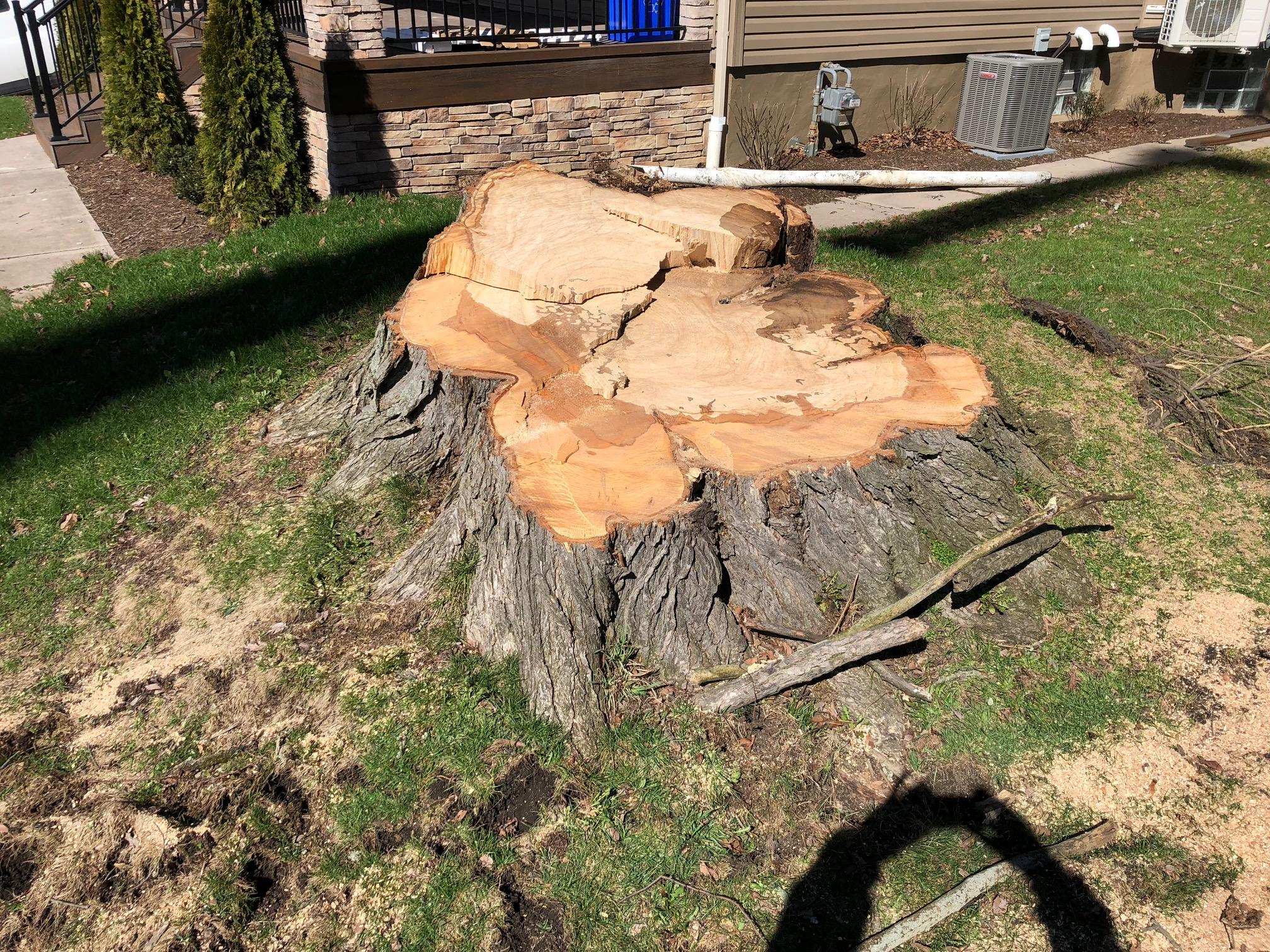Stump Removal Pittsburgh