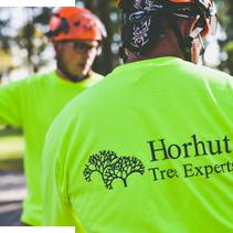 Horhut Tree Experts Team